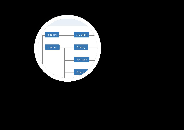 zoom bulk data filters